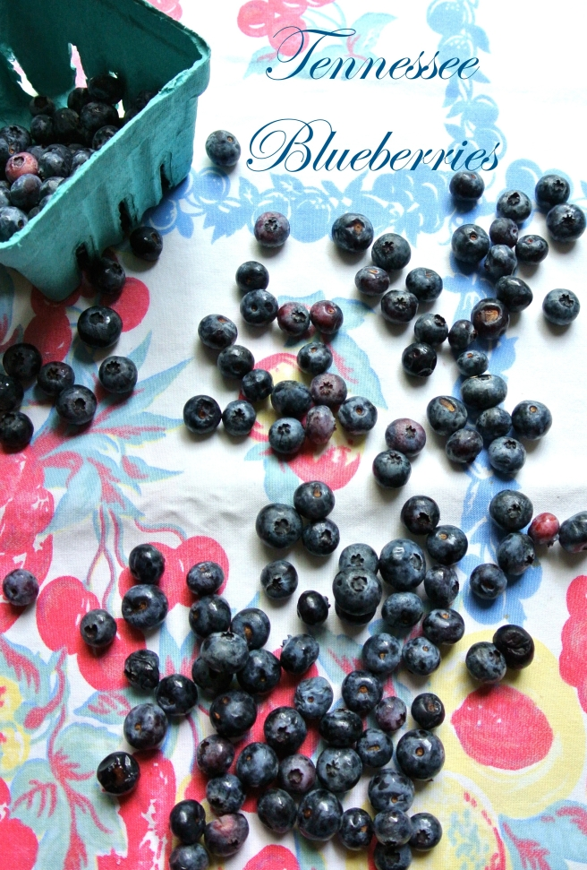 TN Blueberries