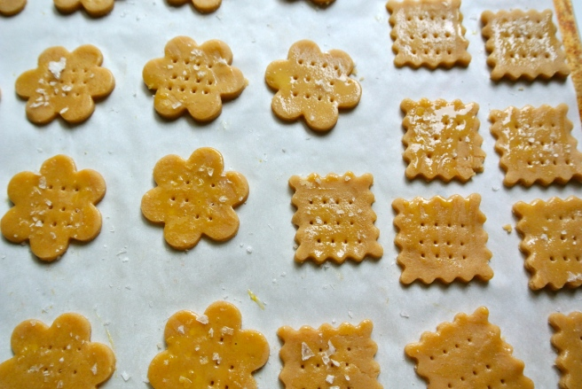 Cut out Cracker Shapes