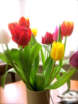 Always tulips on the table...always.