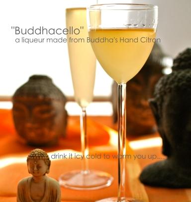 buddhacello2