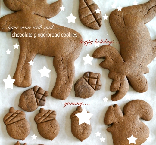 choco gingerbread2